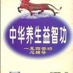 Zong Fu Dao book cover